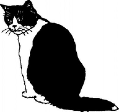 black and white cat cartoon. lack and white cat cartoon.
